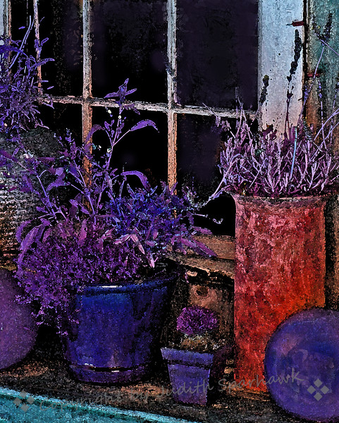 The Window Garden.jpg