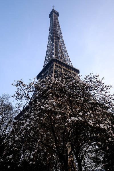 Paris_20150319_0156.jpg