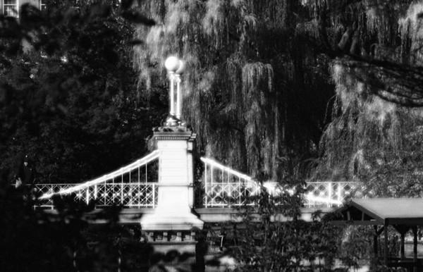 Public Garden Footbridge