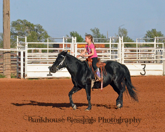 9th Annual ~ Most Consistent Saddle Series ~ 5-17-2013