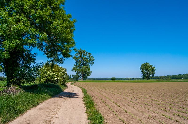 RivierPark MaasVallei, omgeving Oud-Rekem & Kotem 20.jpg