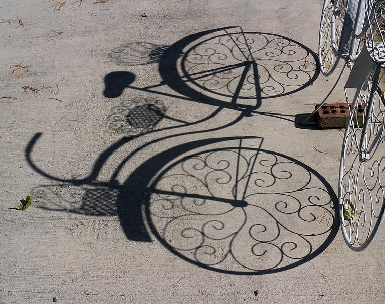 bike shadow0001.JPG