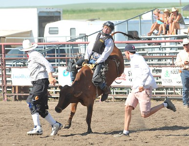 Steer Riding - Section 2