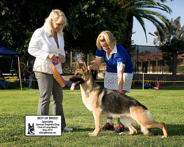German Shepherd Dog Club of Long Beach - May 2014