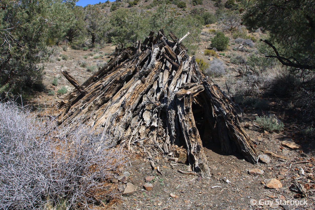 Panamint Wickiup #2