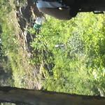 2008-07-24-YOCAMA-Montana_3448.avi
