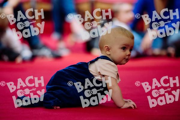 © Bach to Baby 2017_Alejandro Tamagno_Islington Barnsbury_2017-09-08 001.jpg