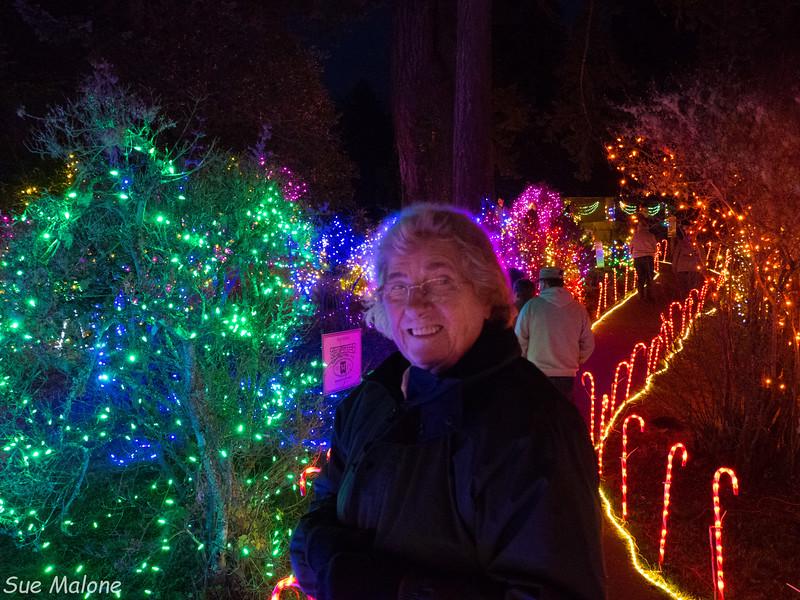 Lights in Brookings-10.jpg