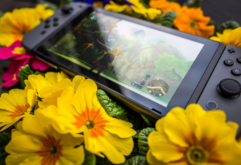 Nintendo Switch and flowers