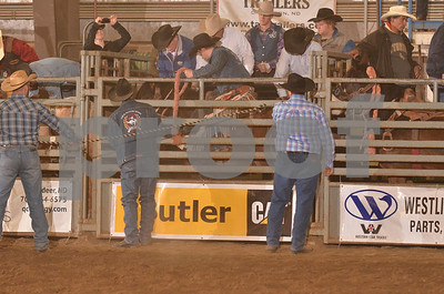 Saddle Bronc Long Go