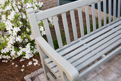 Egelston bench