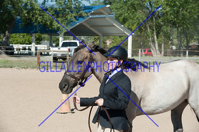Colorado Stock Horse Assoc. August 19th 2012