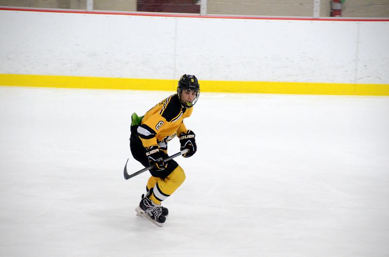 141004 Jr. Bruins vs. Boston Bulldogs-039.JPG