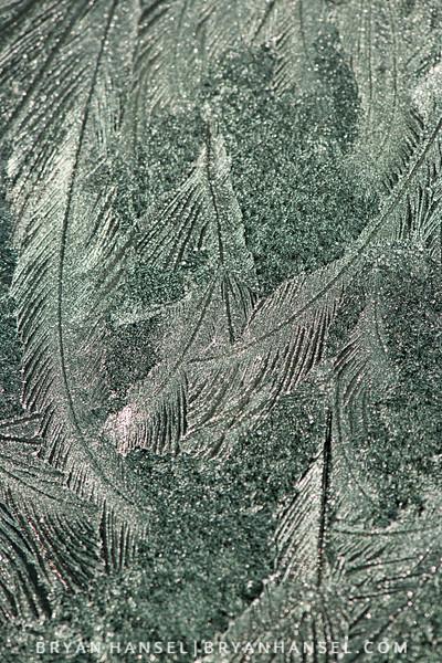 151209-25.jpg