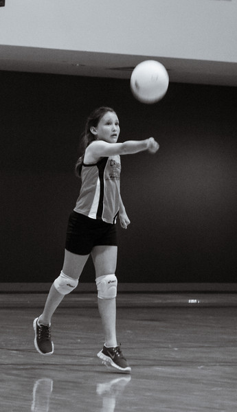 Volleyball-4082.jpg