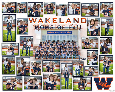 Wakeland Football Seniors Moms Project