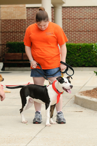 20110514 PetSmart Adoption Event-24.jpg