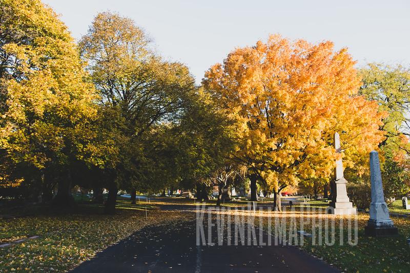 Graceland110218-210.jpg