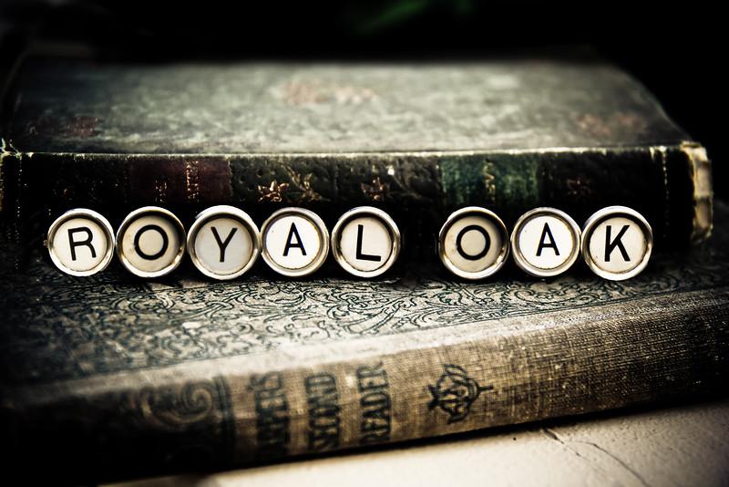 typewriter Royal Oak keys photograph photography michigan lilacpop-1.jpg