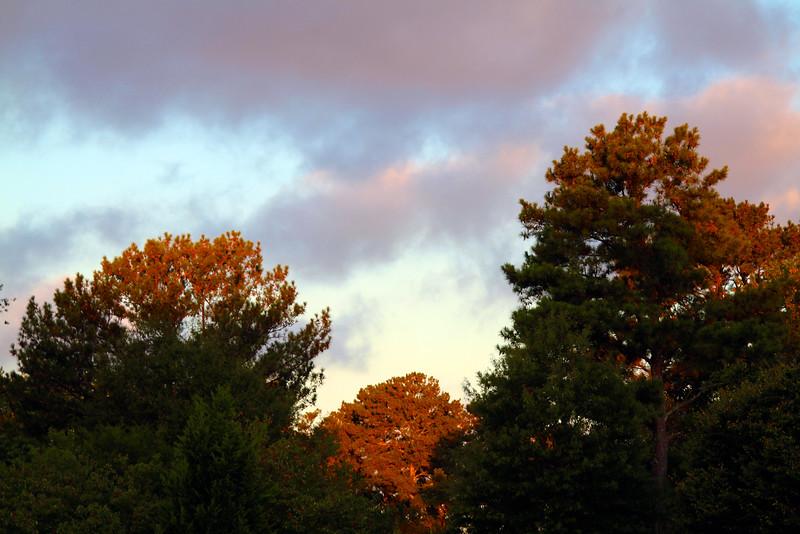 Beautiful sunrise just before start of the 5K..jpeg