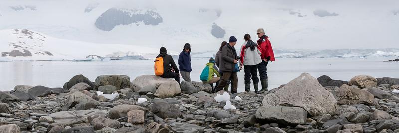 2019_01_Antarktis_03377.jpg