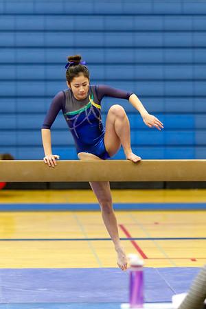 Gymnastics 20180201