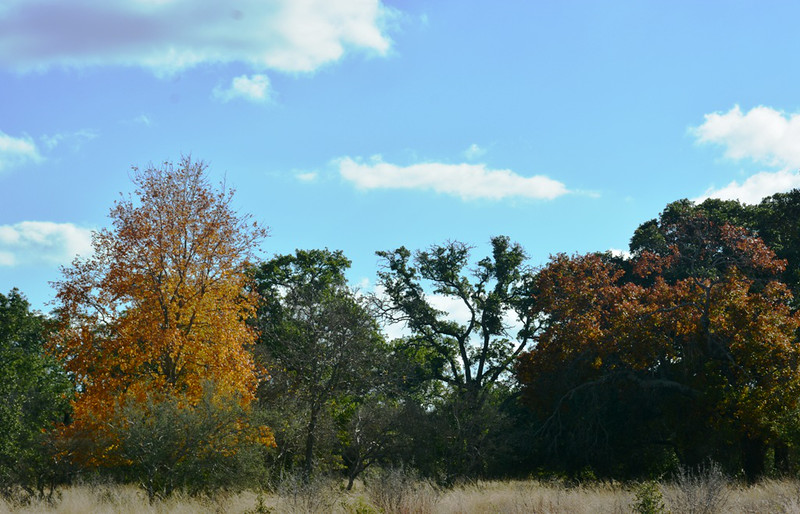 Autumn at the Eads Ranch - 020a.jpg