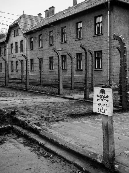 Auschwitz-Birkenau-11.jpg