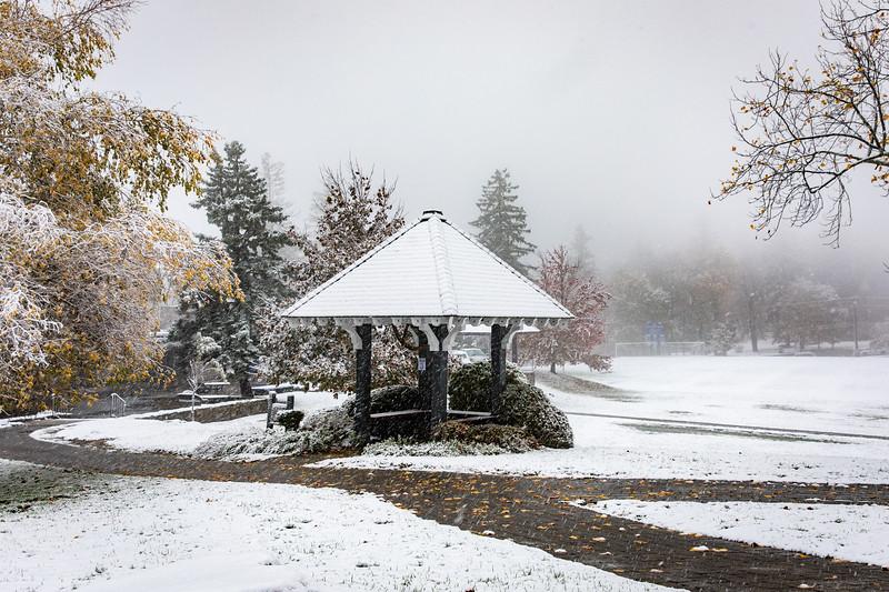20_1st-Snow-2.jpg