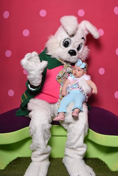 Easter Bunny Photos 2019