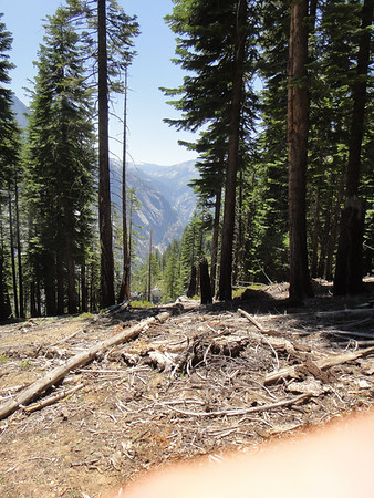 Yosemite Backpacking 2011-08