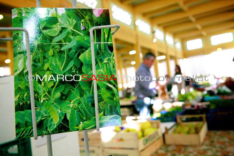 068-Market_Zone2014.jpg