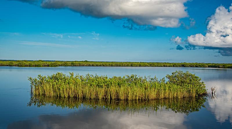Merritt Island National Wildlife Refuge & Blue Heron Wetlands - September 15, 2021