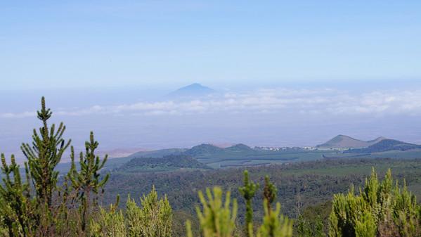 03 Kilimanjaro - to Shara 1 Camp