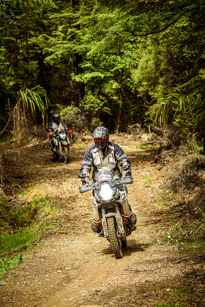 2019 KTM New Zealand Adventure Rallye (1299).jpg