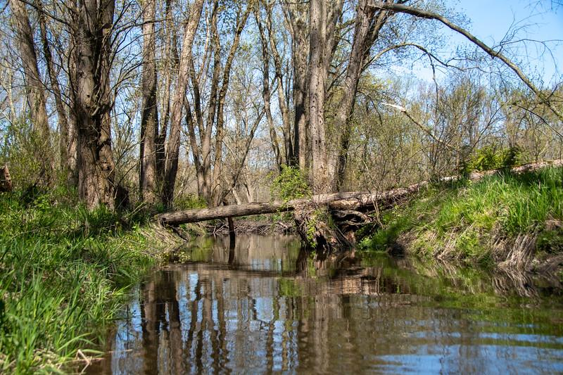 Wallkill River Kayaking - Terry's 05-02-2020-DSC_0715-005.jpg