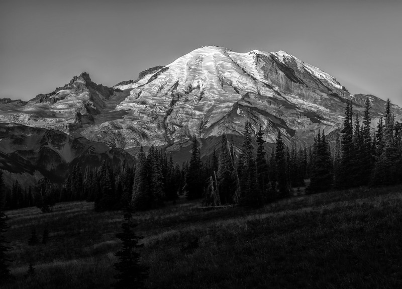 Rainier in Black & White