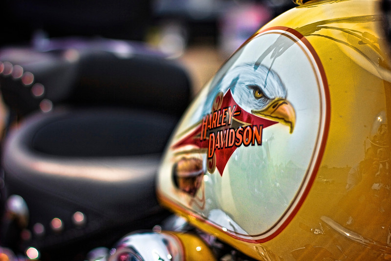Harley Eagle.jpg