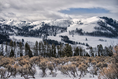 2014 Yellowstone National Park in Winter