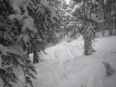 2008-01-Snowboarding