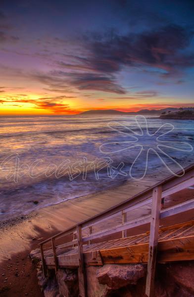 Shell Beach_37