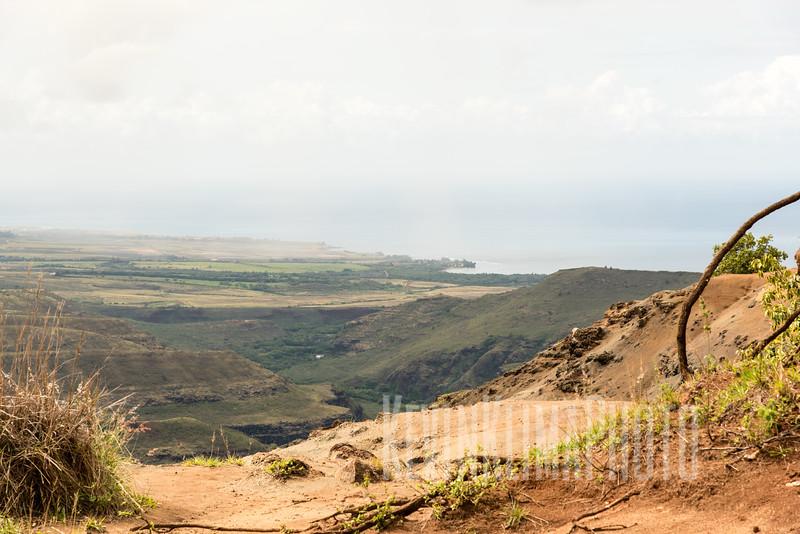 Kauai2017-084.jpg