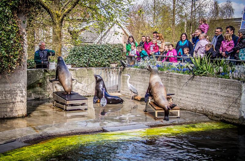 Amsterdam Zoo