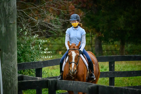 Class 4 - Walk/Trot/Canter - 12 and Yonger