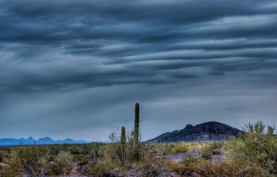 Stormy Desert Landscapes