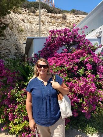 Plants of Israel 2018