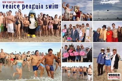 penguin-swim-web-552x368-1-552x368.jpg