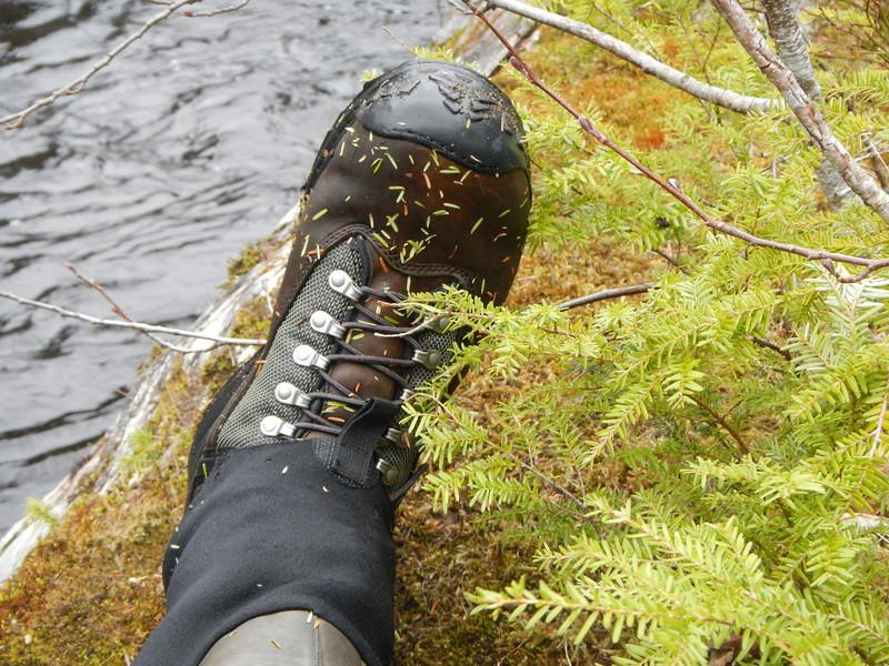 Steve's Boot at Horizontal Log, Kadake Creek, Kuiu Island, Alaska, April 2013