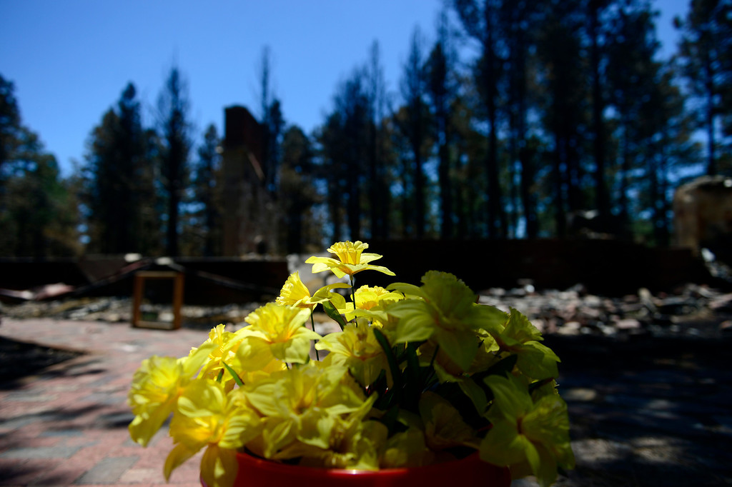 . BLACK FOREST, CO - JUNE 19: Flowers that were among the only surviving items at the home of Don and Vaneal Burgess sit in a pot in front of their home as they look through the remnants. The couple owned the home for 35 years, raised their children and entertained their 13 grandchildren. Their daughter also lost her home to the Black Forest Fire near Herring Road. (Photo by AAron Ontiveroz/The Denver Post)