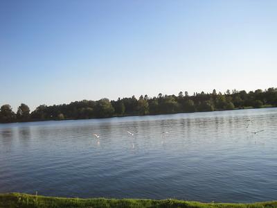 Sept 2 2016 :: Dow's Lake